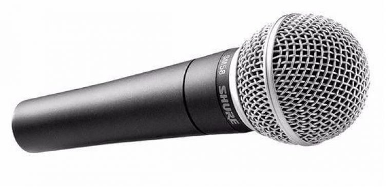 Shure SM58 Microphone and Lead-slide-1