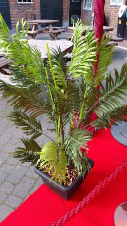 Artificial Plants for Hire-slide-2