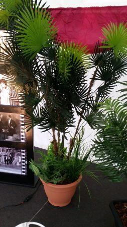 Artificial Plants for Hire-slide-5