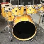 DW Collectors Drum Kit – Gold Sparkle