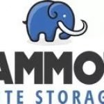 Mammoth Site Storage