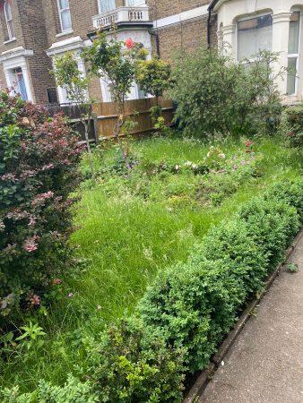 Grounds & Garden Maintenance-slide-3